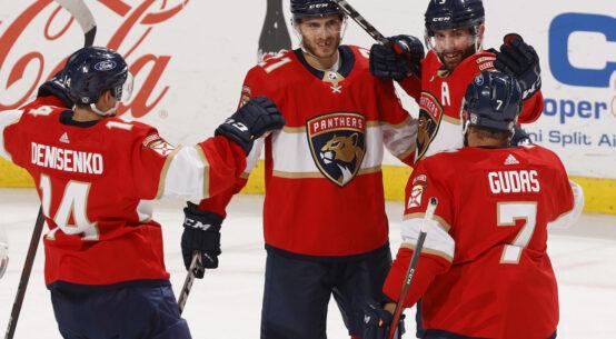 Ice Cats Playoffs